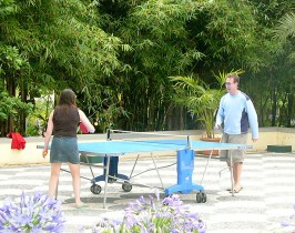 12-table-tennis